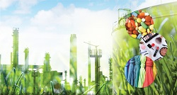 Bio-based innovation builds Europe's bioeconomy