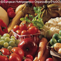 EU project publishes bioethics guidelines for nutrigenomics research