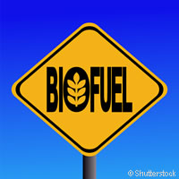 EU and Latin America target sustainable diesel biofuel production