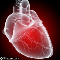 Nanoscale heart imaging doesn't miss a beat