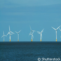 Offshore wind farm promotes biodiversity