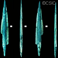 Ancient tools discovery highlights fishing activity