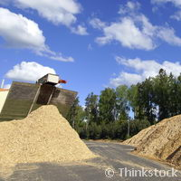 Biomass: the sustainability challenge