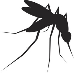 CORDIS Express: Research results take on malaria