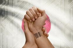 Tendencias científicas: Una «piel virtual» no invasiva que vigila las constantes vitales