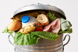 New guidelines and tools to combat food waste