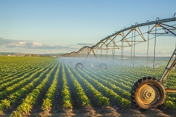 EU researchers showcase their integrated and flexible smart irrigation system