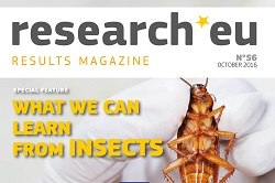 Issue 56 of the research*eu results magazine – What we can learn from insects