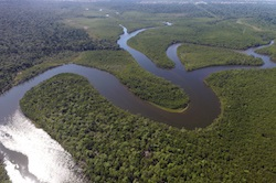 EU and Brazilian researchers: Amazon River older than previously thought