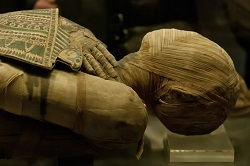 Trending Science: Mummy DNA unlocks the genetic mysteries of the Ancient Egyptians