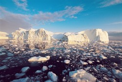 Tendenze scientifiche: Un enorme iceberg si stacca dalla calotta polare antartica