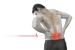 Genetic studies and MRI scans shed light on low back pain