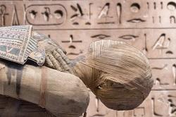 Isotope radiokarbondatierung. Synonyme wort Datierung der pyramiden von ägypten.
