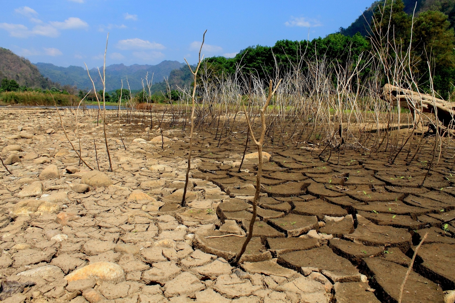 periodic reporting  period  bingo bringing innovation  ongoing water management