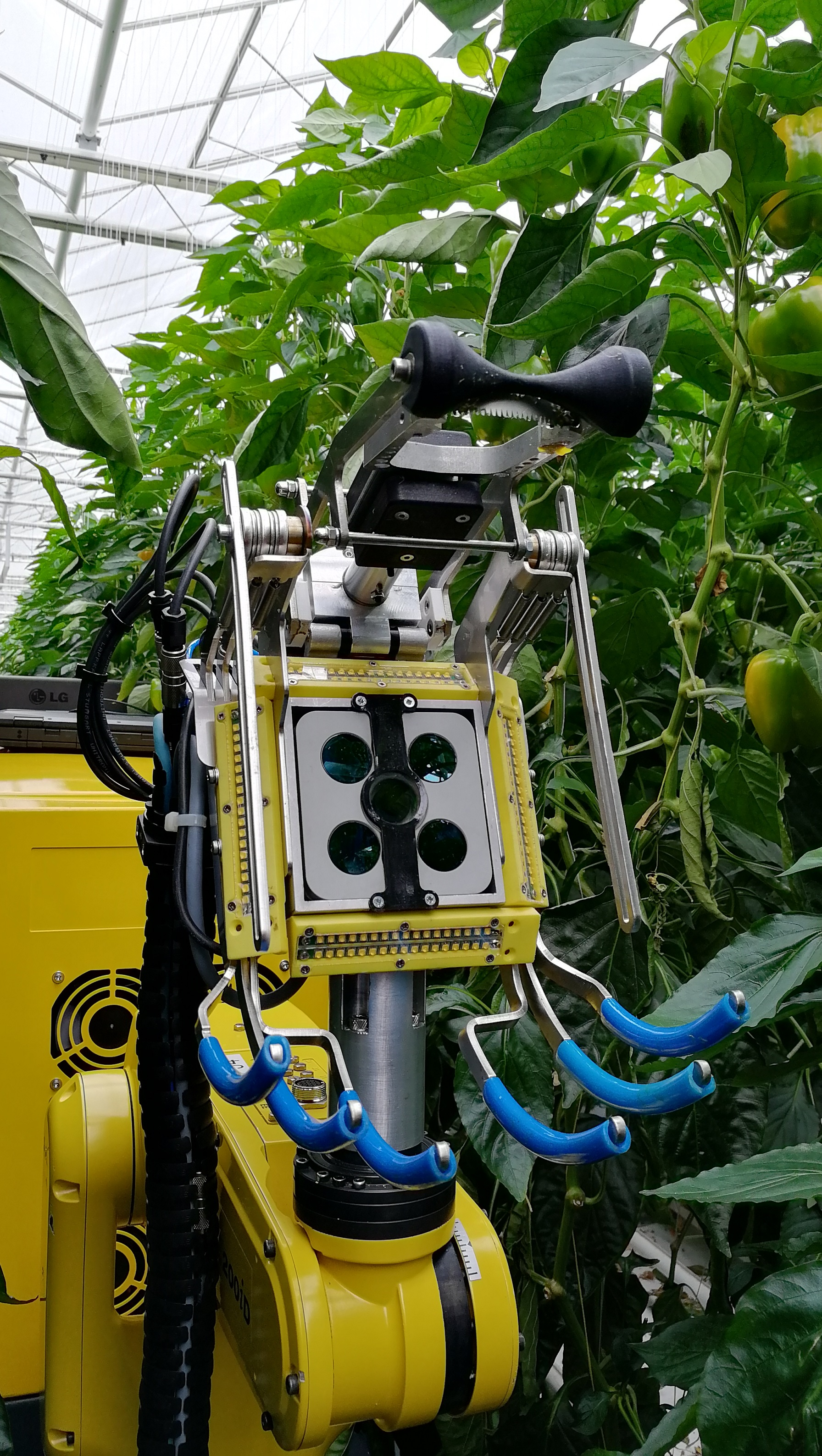 Sweet Pepper Harvesting Robot | SWEEPER Project | H2020