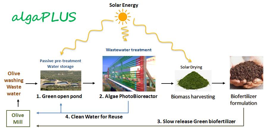 project report on biofertiliser plant
