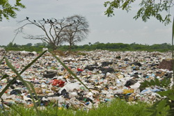 Tackling solid waste in Latin America