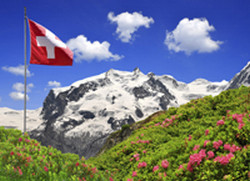 Plant and microbe diversity in Switzerland