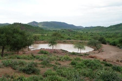 Sub-Saharan agriculture reaps benefits of water harvesting