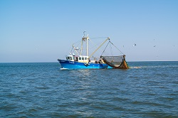 Assessing trawling impact to better protect seabeds
