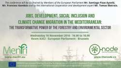 Jobs, Development, Social Inclusion & Climate Change Migration in the Mediterranean: The Transformative Power of the Forestry and Environmental Sector