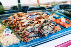 How safe is seafood?