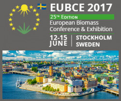 Lena Ek and Henrik Ehrnrooth will co-chair the European Biomass Conference and Exhibition 12-15 June 2017, in Stockholm Sweden