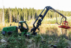 Boosting the European forestry industry