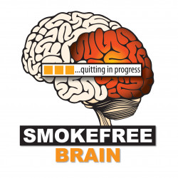 Piloting the SOLOMO App to perform a psychological intervention against smoking, in the context of SmokeFreeBrain project