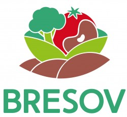 Optimising Vegetable Crops for Organic Farming: Launch of 4-Year EU Research Project BRESOV