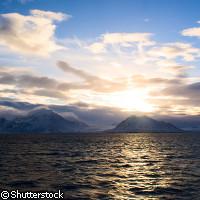 Des études présentent des effets d'acidification sur les écosystèmes marins