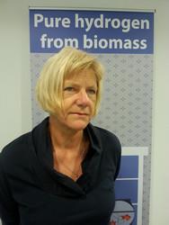 Turning bio-waste into hydrogen